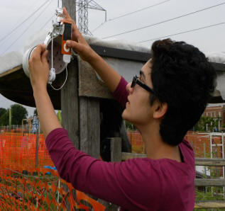 [Bahar setting up a nest box]
