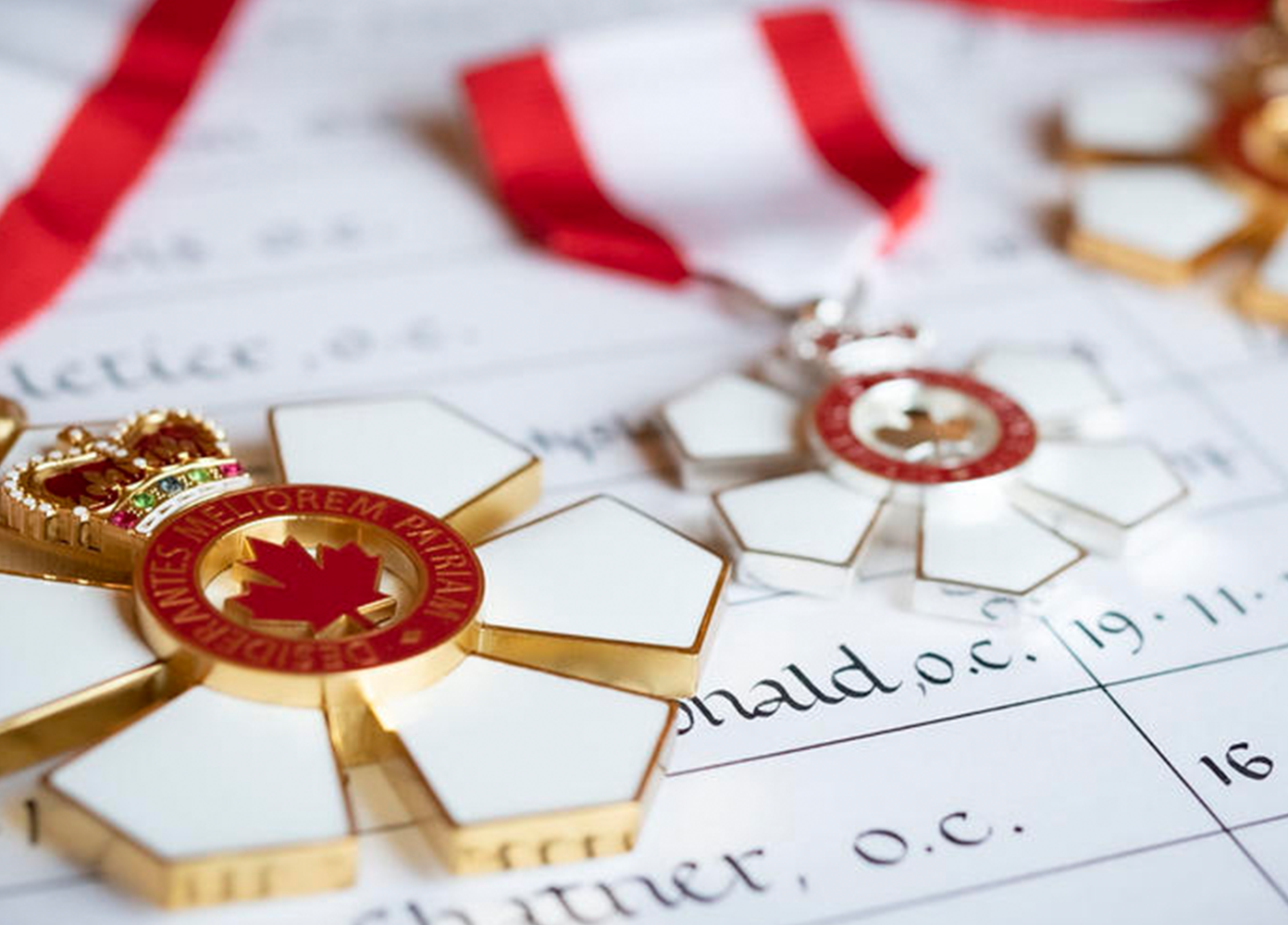 Eight York alumni appointed to Order of Canada