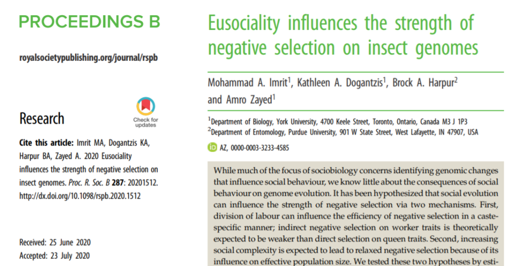 "Read ""eusociality influences the strengths of negative selection on insect genomes"""