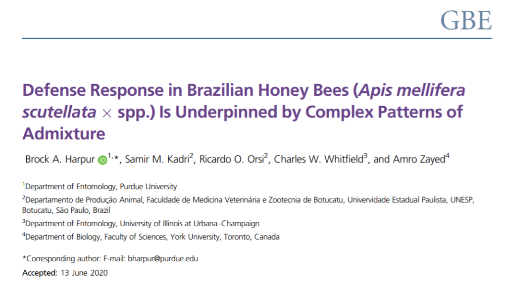 "Read ""defense response in Brazilian honey bees (Apis mellifera scutellata x spp.) is underpinned by complex patterns of admixture"""