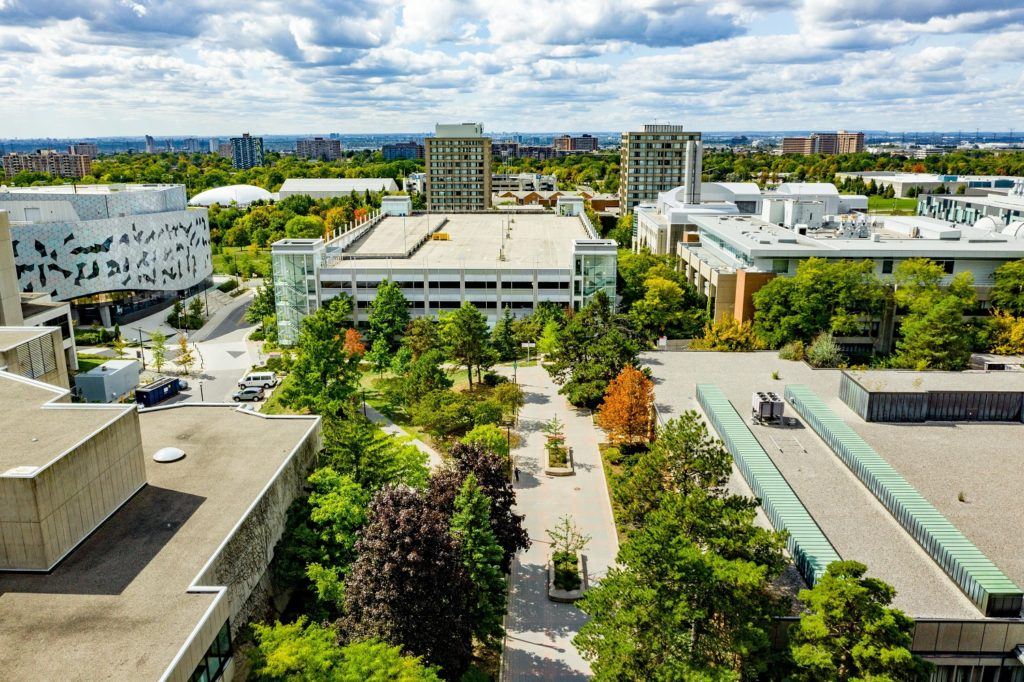 campus walk from a birds eye view