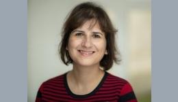Professor Lilian Tsourdi