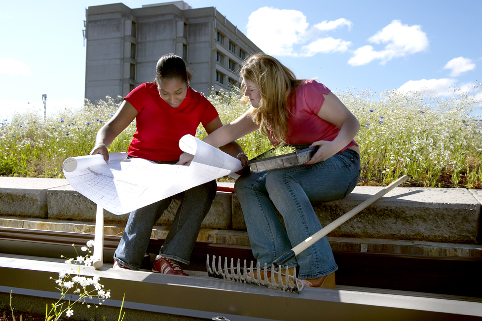 Two students reviewing blueprints outside with a garden rake next to them