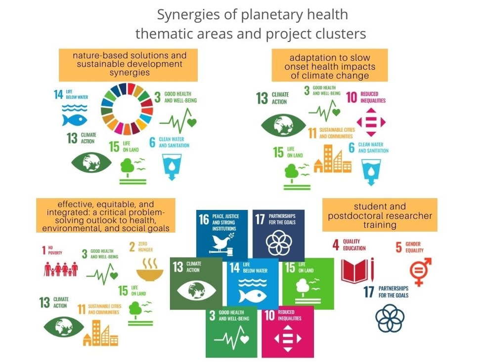 Diagram of thematic areas for Synergies of Planetary Health