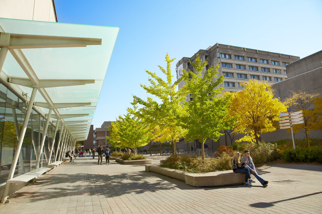 Image of campus walk and the Lassonde building