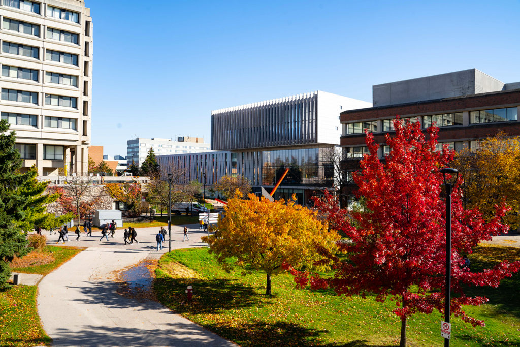 Image of York campus in the Fall
