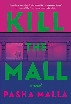 Kill the Mall book cover