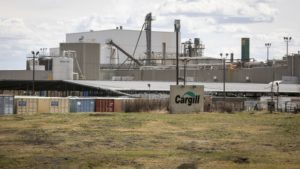 Cargill meat plant photo by Jeff McIntosh / The Canadian Press