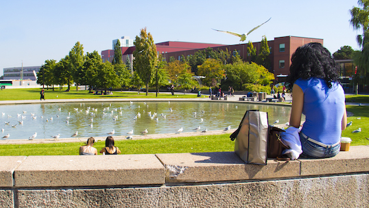 Female student sits next to commons pond on York University Keele Campus