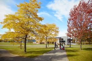 walkway autumn