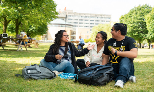 three yorku students in the shade under a tree at keele campus on summer day