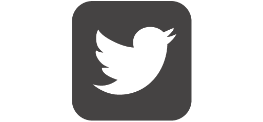 twitter logo in york grey colour