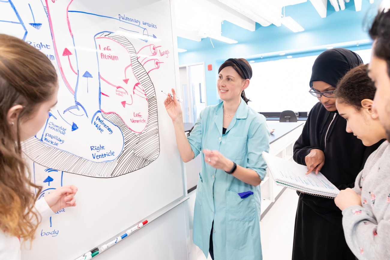people working together by a whiteboard