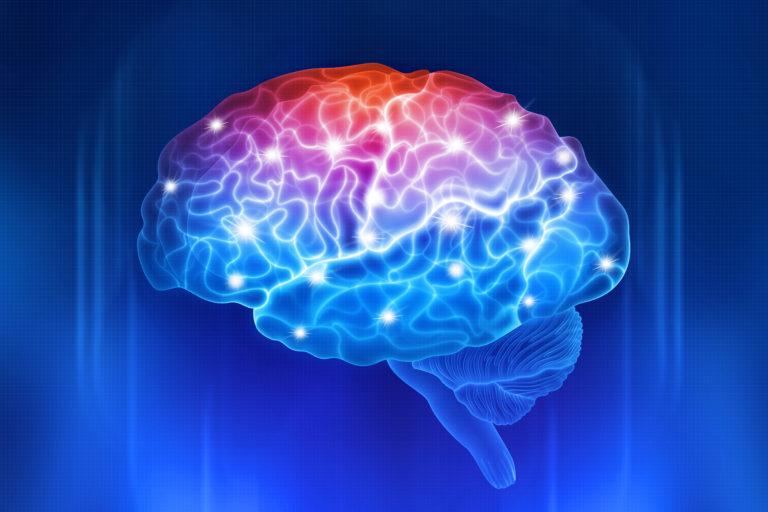 brain with lights