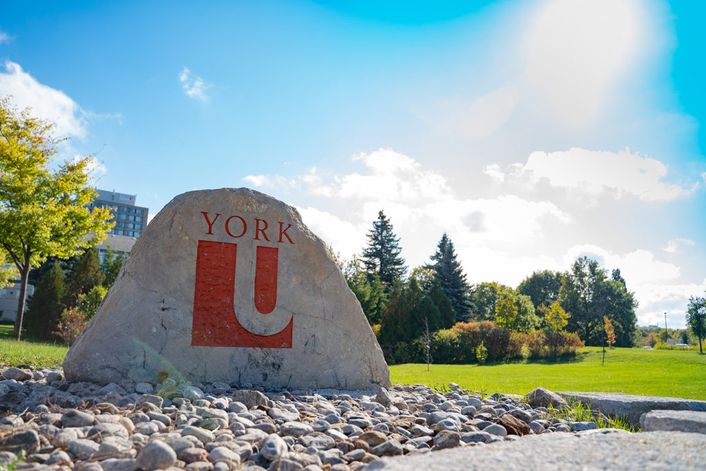 The York University logo carved into a large rock sitting in a green field with trees and a blue sky in the background.