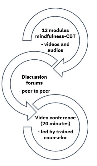 Key components of the Mindfulness Virtual Community program