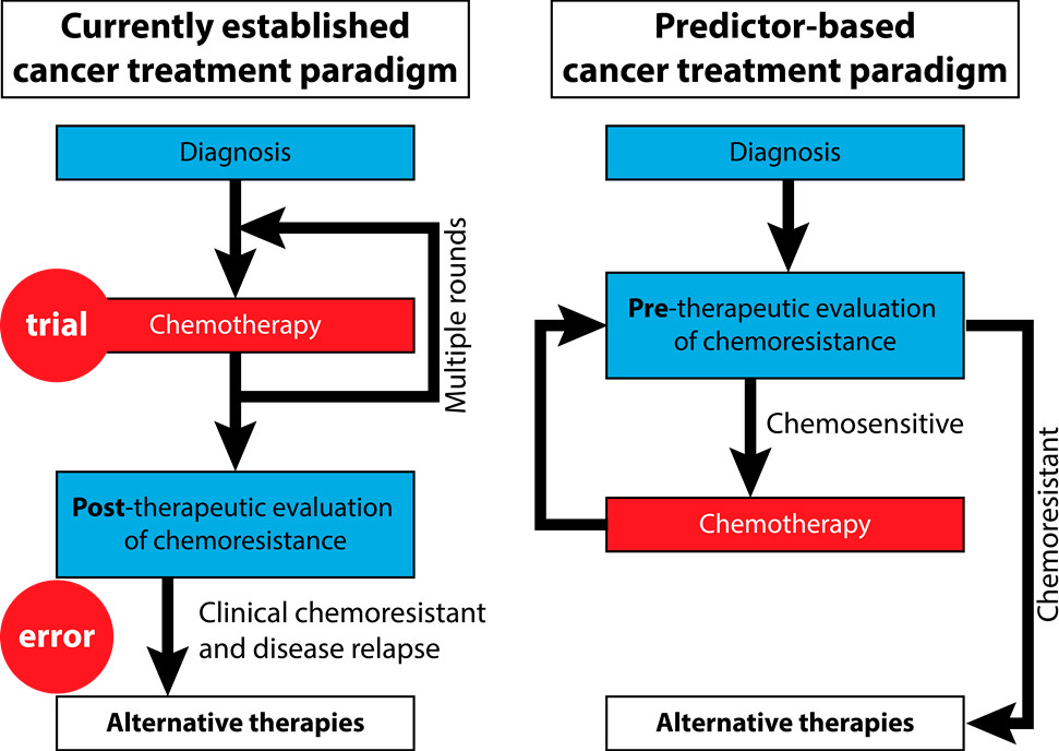 Current and prospective cancer treatment paradigms. In the current paradigm, evaluation is done after multiple rounds of chemo. In the predictor-based paradigm, evaluation is done prior to chemotherapy, preventing useless treatment in chemoresistant patients.