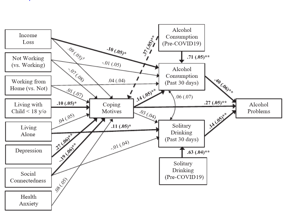 This figure shows the many pathways to alcohol use and alcohol problems early in the COVID-19 pandemic