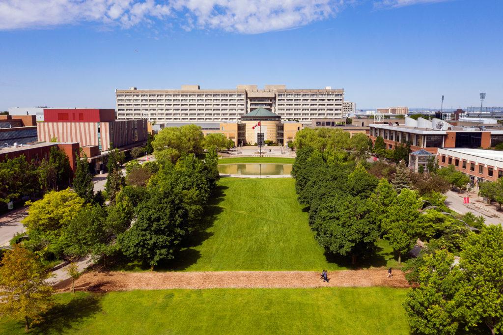 York University Commons