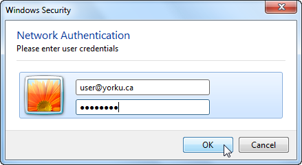 Screenshot of logging in with username and password